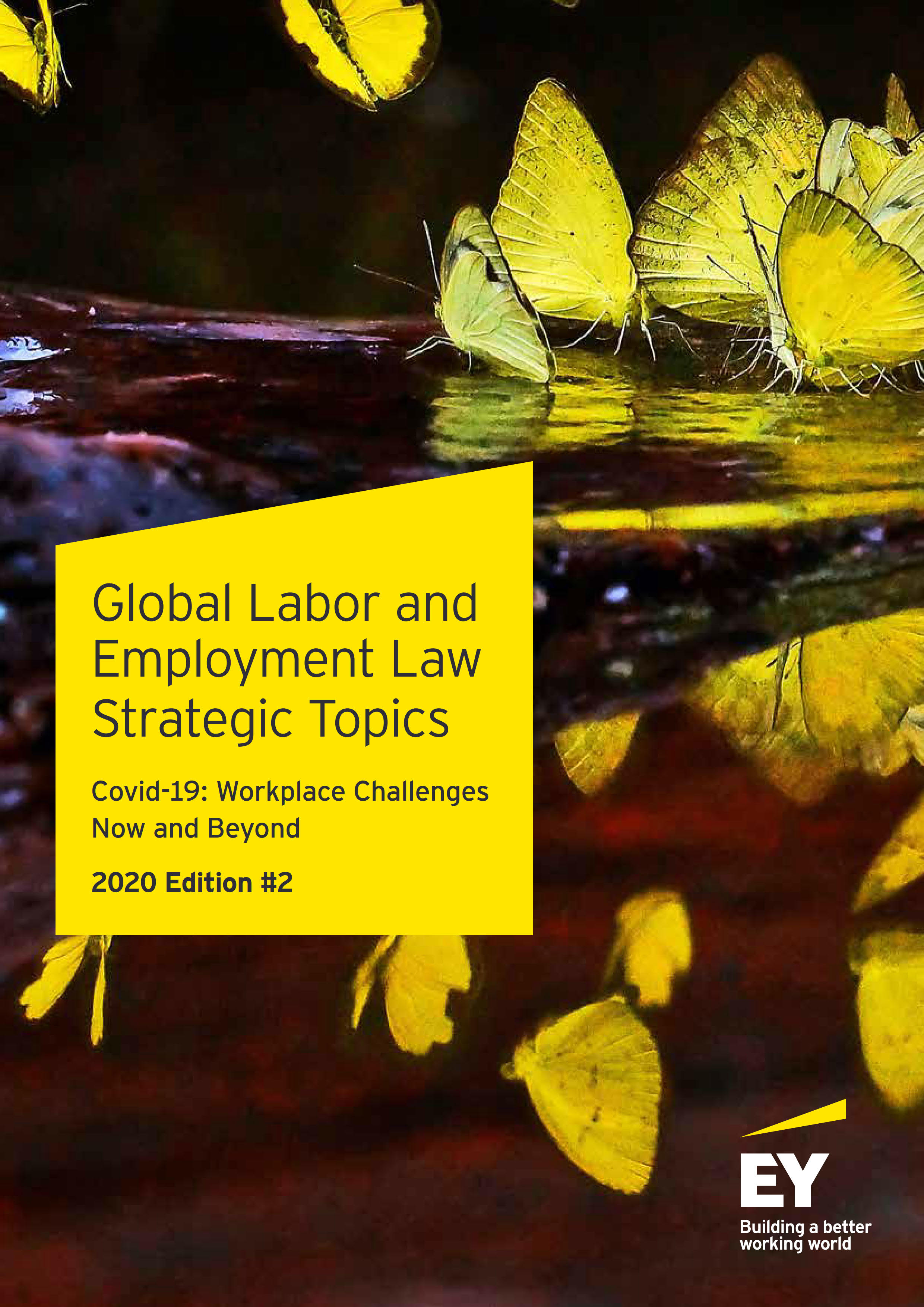 Global Labor and Employment Law Strategic Topics Covid-19: Workplace Challenges Now and Beyond 2020 Edition #2